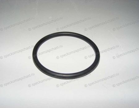 Прокладка помпы (кольцо) малое на Фиат Дукато - 17289680