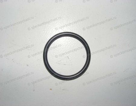 Прокладка корпуса термостата (резинка) 38x4mm на Форд Транзит - 1130311