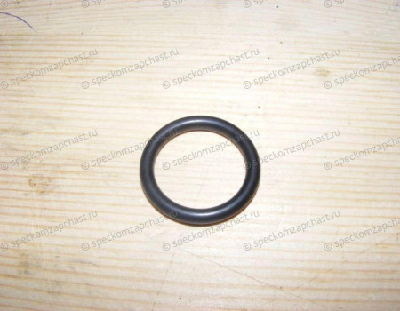 Прокладка (кольцо) трубки охлождения на Фиат Дукато - 17288480