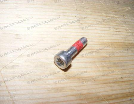 Болт крепления выжимного подшипника на Фиат Дукато - 73503761
